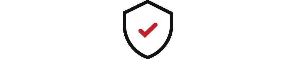 Seguridad express del sitio web